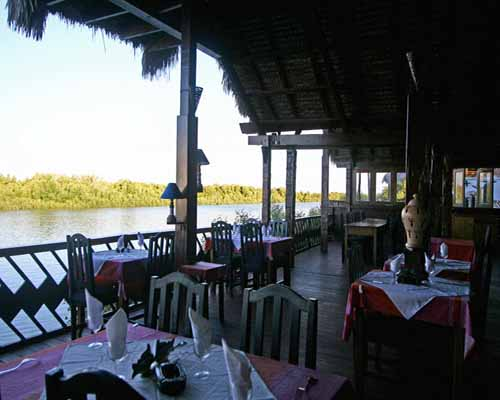 baobab cafe restaurant