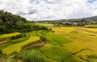 Les meilleures choses à faire à Antsirabe, Madagascar